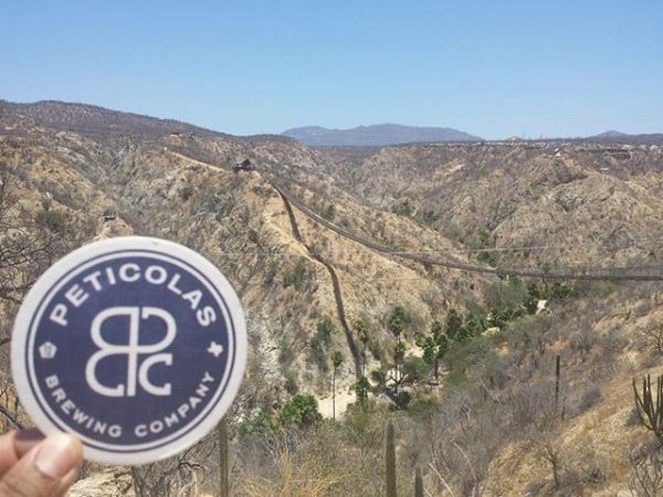 peticolas-brewing-company-expands-distribution-austin-month-july
